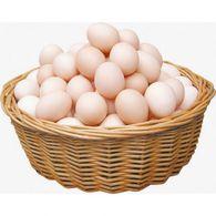 نصائح لحفظ البيض