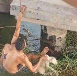 «مبيعرفش يعوم»..«سعيد» يعرض حياته للخطر لإنقاذ كلب من الغرق «فيديو»