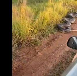 ظهور ثعبان أناكوندا عملاق في منطقة صناعية بـ الهند (فيديو)