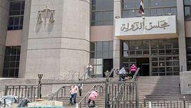القضاء الإداري يؤجل 5 دعاوى خاصة بانتخابات مجلس النواب إلى الغد