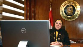 وزيرة التجارة والصناعة تصدر قراراً بإعادة تنظيم جهاز حماية حقوق الملكية الفكرية