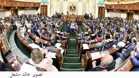 طارق رضوان بشيد بمسودة الإستراتيجية الوطنية لحقوق الإنسان