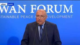 عاجل.. شكري: تصرفات إثيوبيا الفردية تعرض شعبين لمخاطر وجودية