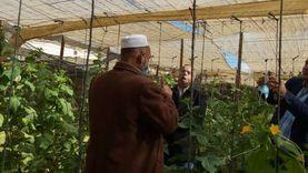 محافظ مطروح: اختيار 20 فدانا كنماذج إرشادية للمحاصيل في واحة سيوة
