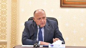 وزير الخارجية يبحث التطورات في الأراضي الفلسطينية مع نظيره الأمريكي