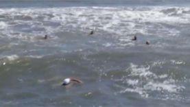 """قائد """"غواصين الخير"""": غرقى الإسكندرية بينهم فتاة توفيت بعد دقائق من نزولها"""