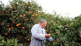 نصائح زراعية مهمة لتجنب أضرار الموجة الحارة
