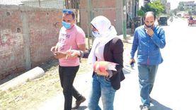 نائب محافظ القليوبية تتفقد مشروعات تطوير قرى كفر شكر