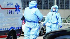 الأوبئة الأردنية: الحيوانات لا تنقل عدوى كورونا للإنسان