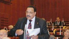 مرشح بالقائمة الوطنية: انتخابات مجلس الشيوخ جمعت حلفاء ثورة 30 يونيو