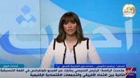 دبلوماسي سابق: مصر لديها قدرات على مساعدة الدول الأفريقية