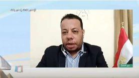عشيش: التصويت عن طريق البريد الإلكتروني سهل للمصريين في الخارج عملية الانتخاب