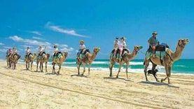 السياحة الداخلية تنعش مدينة دهب خلال شهر رمضان