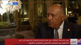 شكري: الجامعة العربية أكدت حقوق الفلسطينيين المشروعة في إقامة دولتهم