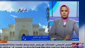 دبلوماسي سابق: الدول الأفريقية تعرف أن مصر ستكون قوة كبيرة خلال عقد