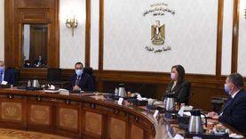 مدبولي يلتقى رئيس «طاقة» النواب لبحث مشروعات البترول