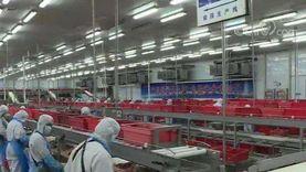 """""""الصناعات"""": توريد الأغذية للمحال خلال أيام لشركات القائمة البيضاء فقط"""