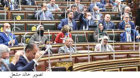 «تضامن النواب» تقر 60 مليون جنيه للمجلس القومي للسكان