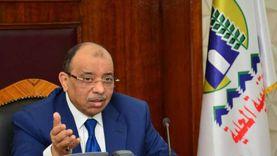 شعراوي: الزيادة السكانية تحرم المواطن من ثمار التنمية