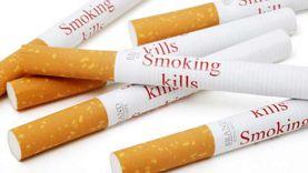 """""""السجائر المهربة"""" تقتنص 3.5% من حجم سوق الدخان في مصر"""