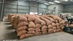 مسؤول: مخزون القمح المصري يكفي 5-6 أشهر