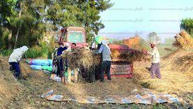 """البيئة تواصل حرب """"السحابة السوداء"""" بجمع 66 ألف طن قش أرز"""