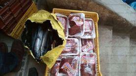 ضبط 17 طن أسماك ولحوم غير صالحة للاستهلاك في الشرقية