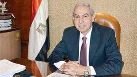 وزير الصناعة الأسبق: غلق «الحديد والصلب» مؤلم.. لكن عملي واقتصادي 100%