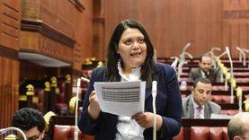 برلمانية عن «تنسيقية شباب الأحزاب»: مفيش صدامية ولا مجال للمزايدة