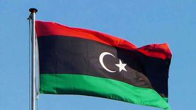 """""""الرميح"""": السياسة المصرية تلهم العالم.. وتركيا تعكر السلم الليبي"""