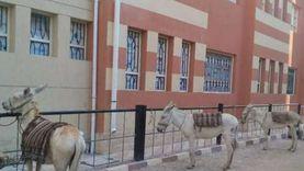 سور مدرسة جديدة يتحول إلى موقف للحمير في قنا (صور)