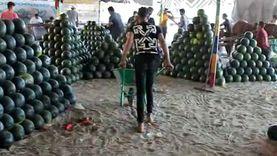 تجار البطيخ بـالمحلة: «بنبيع حمار وحلاوة.. ومبنشتغلش غير في النضيف»