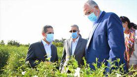 """وزير الزراعة بالغربية: دعم مشروعات """"الصوب"""" بقروض ميسرة بفائدة 5%"""