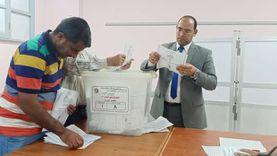 """488 صوتا لصالح """"أبو العينين"""" من إجمالي 516 بلجنة صلاح سالم في الجيزة"""