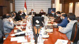 وزيرة التخطيط تناقش مع 5 وزراء مقترح خطة 2021-2022 الاستثمارية