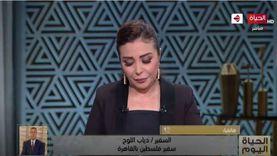 سفير فلسطين: ندعو لمؤتمر دولي لإقرار السلام ومبدأ حل الدولتين
