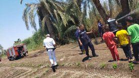 السيطرة على حريق محدود بمنطقة «نخيل» في بني سويف