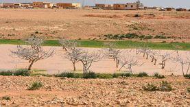 مياه الأمطار .. مصدر حياة سكان القرى والنجوع في مطروح