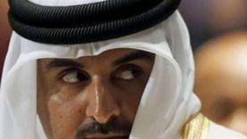 عادة قطرية.. الدوحة تغرد دوما خارج السرب العربي لصالح أنقرة