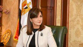 معايير يجب توافرها على صفحات التواصل الاجتماعي للمصريين بالخارج
