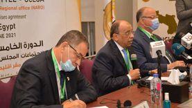 شعراوي: خبرات مصر وإمكانياتها في خدمة الأشقاء الأفارقة