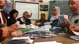 3383 صوتا للمرشح أبو العينين في 12 لجنة فرعية بالجيزة