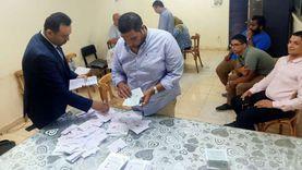 """""""مستقبل وطن"""" و""""القائمة الوطنية"""" يتصدران المحافظات والمرشحون ينتظرون أصوات الخارج لحسم الجولة الأولى"""