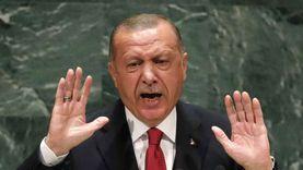 مساعد وزير الخارجية السابق: تركيا تهدد الأمن القومي لجيرانها