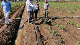 """""""زراعة دمياط"""" تناقش مشروعات التحول للري الحديث وزيادة الإنتاحية"""