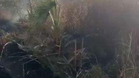 فيديو.. لحظة السيطرة على حريق بحرم السكك الحديدية شرقي الإسكندرية
