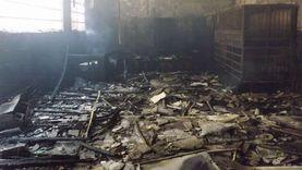 السيطرة على حريق مزرعة دواجن بكفر سعد في دمياط دون وقوع إصابات