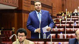 رئيس حزب العدل عن ترشحه بقائمة انتخابات النواب: نمثل المعارضة الوطنية