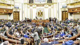 مقترح برلماني للحكومة لوقف استقدام العمالة الأجنبية لمصر