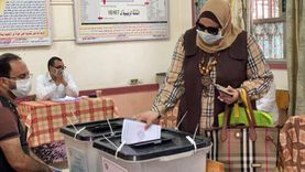 الدقهلية تعلن انتهاء استعدادات جولة إعادة انتخابات النواب